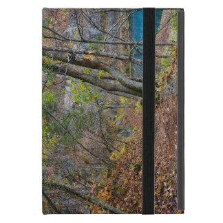 Alley Mill Autumn Walk iPad Mini Covers