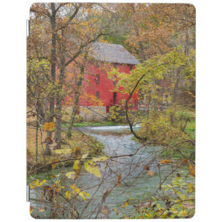 Alley Through The Woods iPad Cover