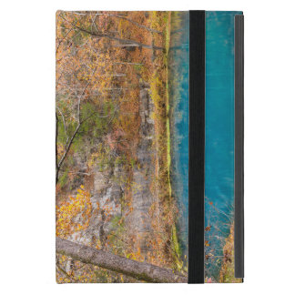 Alleys Blue Spring Case For iPad Mini