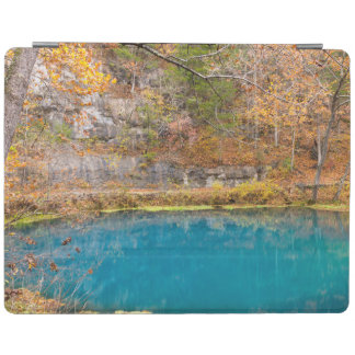 Alleys Blue Spring iPad Cover