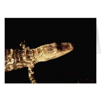Alligator #1 greeting card