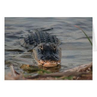 Alligator Card
