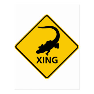 Alligator Crossing Highway Sign Postcard