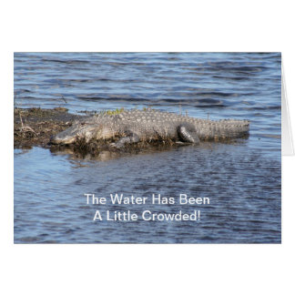 Alligator Gator Greeting Card