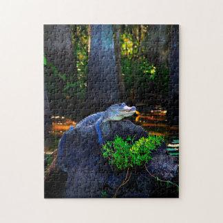 Alligator Gator Louisiana. Jigsaw Puzzle