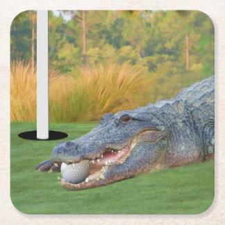 Alligator, Hazardous Lie on Golf Course Square Paper Coaster
