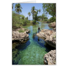Alligator Hole, Black River Town, Jamaica Card