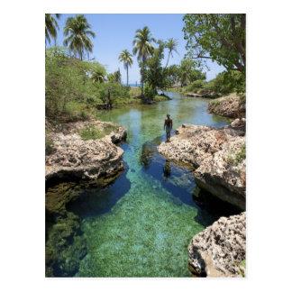 Alligator Hole, Black River Town, Jamaica Postcard