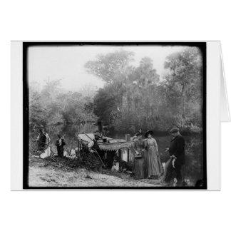 Alligator Hunting, Tomoka River, Florida 1880-1897 Greeting Card