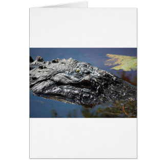 Alligator of North Carolina Card