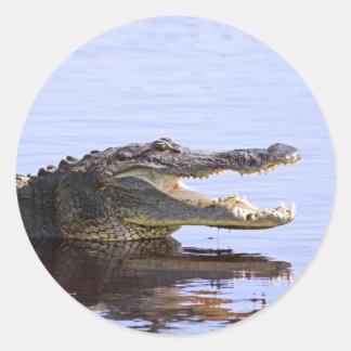 Alligator Round Sticker