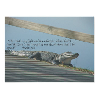 Alligator Scripture Poster