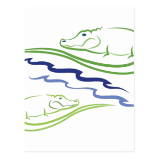 Alligators Postcard