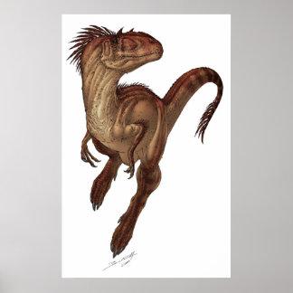 Allosaurus fragilis poster