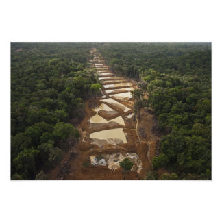Alluvial Gold Mining. Rainforest, Guyana. Posters