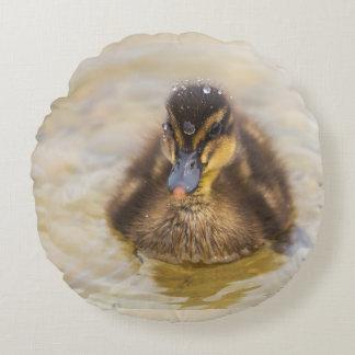 Almofada Bird 4 Round Cushion