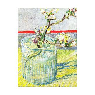 Almond Blossom Branch Canvas Print