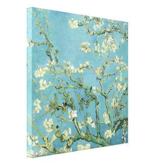 Almond Blossom by Van Gogh Fine Art Canvas Print