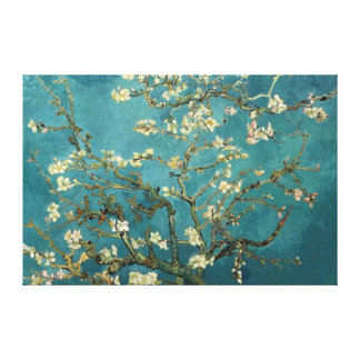 Almond Blossom Canvas Stretched Canvas Prints
