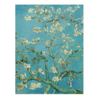 Almond Blossoms by Vincent van Gogh Postcard
