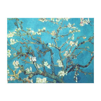 Almond Blossoms Stretched Canvas Print