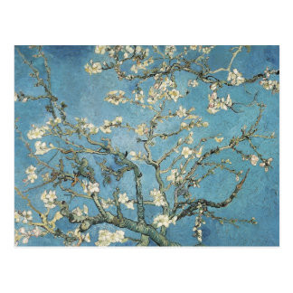 Almond branches in bloom, 1890, Vincent van Gogh Postcard