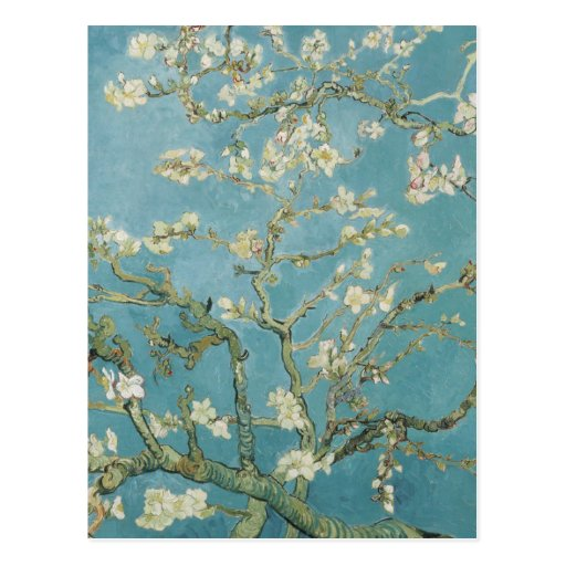 Almond tree in blossom by Vincent Van Gogh Post Card
