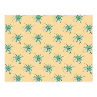 Aloe Arborescens Succulent Postcard
