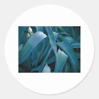 Aloe Classic Round Sticker