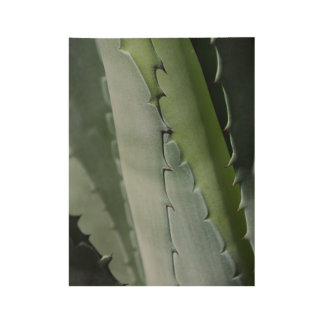 Aloe - Macro Fine Art Photograph Wood Poster