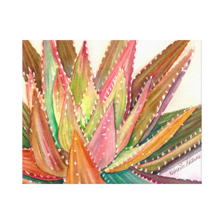 Aloe nobilis watercolor by Debra Lee Baldwin Canvas Print