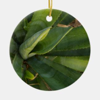 Aloe Vera Ceramic Ornament