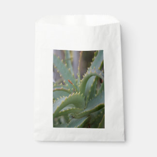 Aloe Vera Leaves Favour Bag