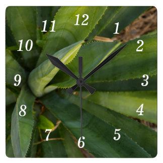 Aloe Vera Square Wall Clock