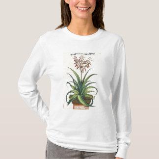 Aloe Vera Vulgaris, from 'Phytographia Curiosa', p T-Shirt