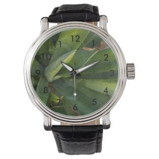 Aloe Vera Watch