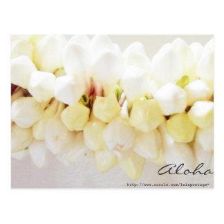 Aloha and Mahalo Postcard