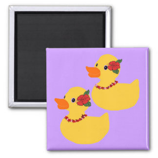 Aloha ducks magnet