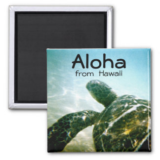 Aloha Hawaii Sea Turtle Square Magnet