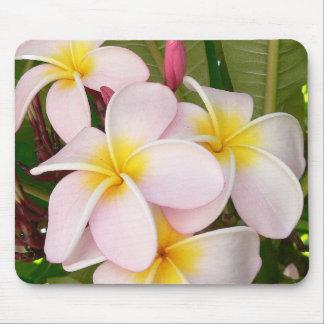 Aloha Hawaiian Frangipani Blossoms Bridal Shower Mouse Pads