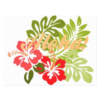 Aloha Hibiscus Postcard