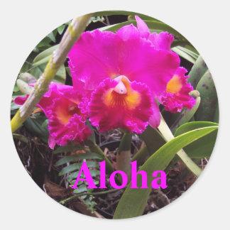 Aloha orchid sticker