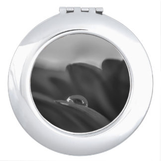 Alone a black and white water drop on Gerber Daisy Compact Mirrors
