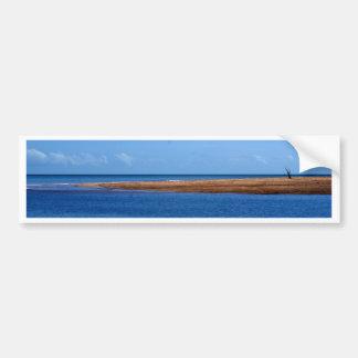 Alone Darwin Beach Bumper Sticker