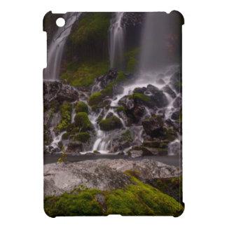 Along the Banks of Burney Creek iPad Mini Cases