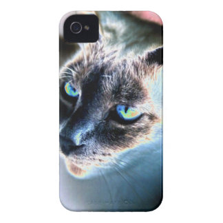 Aloof Siamese Cat Altered Blackberry Bold Case