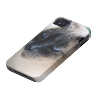 Aloof Siamese Cat Blackberry Bold Case