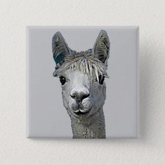 Alpaca 15 Cm Square Badge