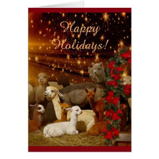 Alpaca Christmas Holiday Cards