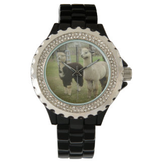Alpaca Duo Wristwatch